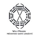 Willy Mangin